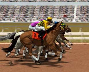 At Yarışları 2018