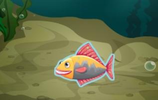 Balığa Gitme