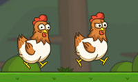 Çiftlik Tavukları