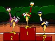 Deve Kuşu Yarışı
