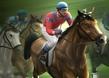 Engelli At Yarışı 2