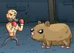 Hayvan Dövüşleri