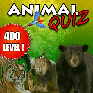 İngilizce Öğreniyorum Hayvan Bulmaca