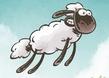 Kafadar Koyunlar