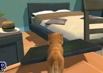 Köpek Simulator