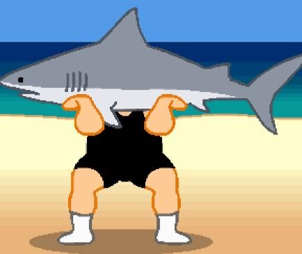 Köpekbalığı Kaldırma