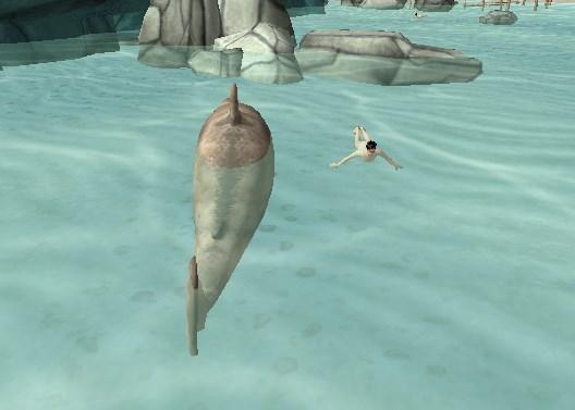Köpekbalığı Paniği