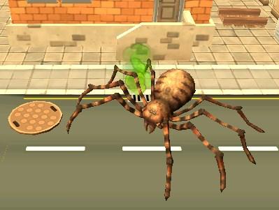 Örümcek Besleme