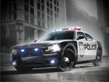 Polis Arabası Park Et 3