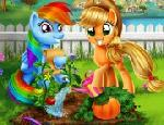 Pony Bahçesi