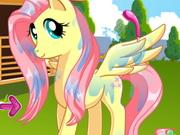 Pony Kuaförü