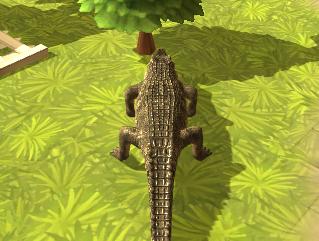 Vahşi Hayvan Simülator