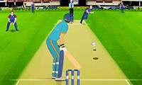 Kriket Maçı